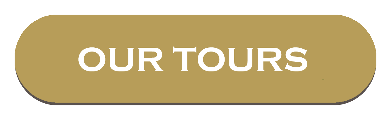 OUR TOURS